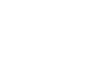 The Bread Foundation
